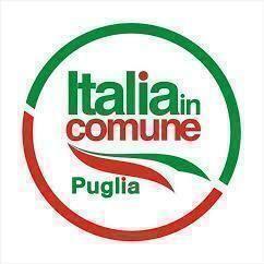 Italia in Comune- il partito si struttura sul territorio