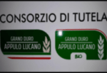 Costituito il Consorzio di Tutela del Grano Duro Appulo-Lucano
