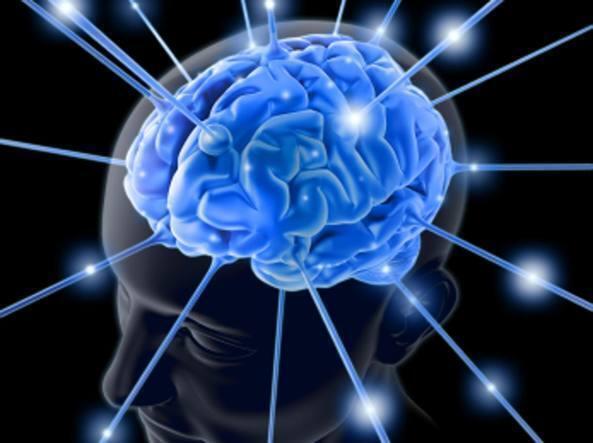 Il cervello spesso dimentica i dettagli