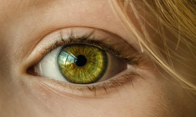 "Verde come Invidia: quarta tappa di ""Poesie Superbe"""