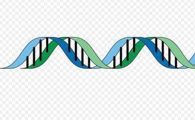 La terapia genica nuova speranza per i bambini talassemici