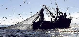 Pesca e agricoltura per rendere la Puglia competitiva nelle politiche internazionali