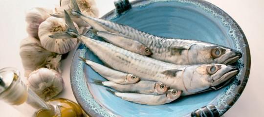 Gli italiani non mangiano più pesce azzurro. Ed è un male