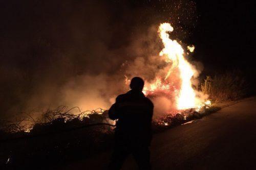 La Murgia incenerita da un violento incendio