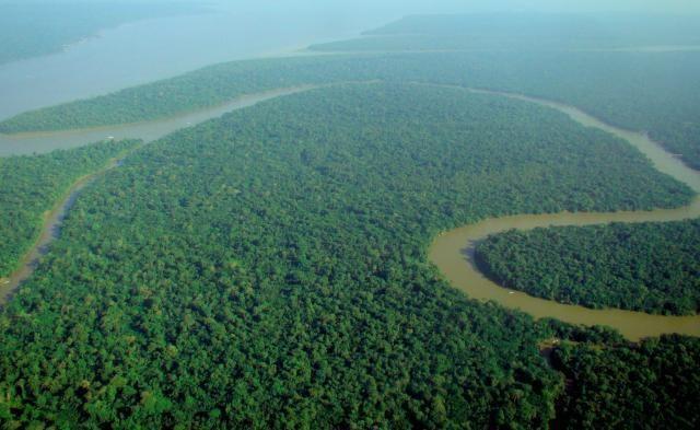 L'Amazzonia continua a bruciare e nessuno fa niente