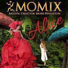 Alice e la magia della danza