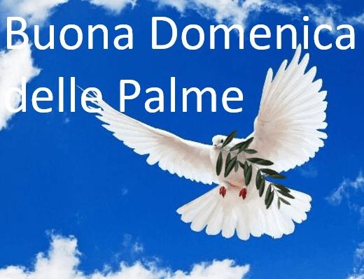 Buona Domenica delle Palme ai nostri lettori, la benedizione delle Palme giungerà nelle nostre case on line attraverso i social