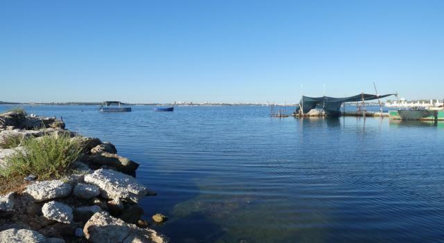Legge istitutiva del Parco  del Mar Piccolo è diventata operativa