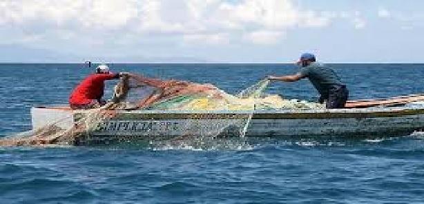 Ue, D'Amato (Greens): nuovo FEAMPA tradisce piccola pesca e ambiente