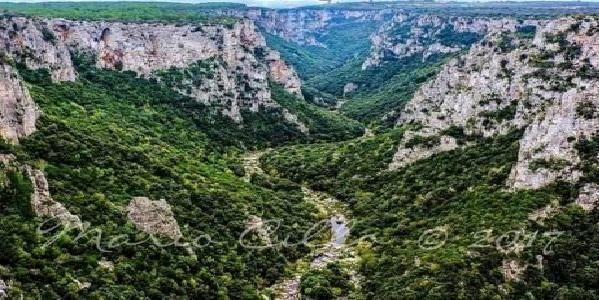 Taranto – Parco Gravine, comitato e associazioni pungolano la Regione, «fare presto!»