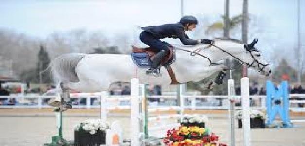 """Un virus """"molto contagioso"""" scuote il mondo dello sport equestre"""