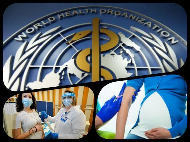 Vaccini: tre dozzine di aborti spontanei o feti nati morti
