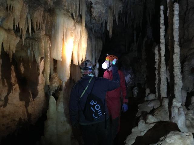Grotte di Castellana, monitoraggio sull'animale di grotta dell'anno