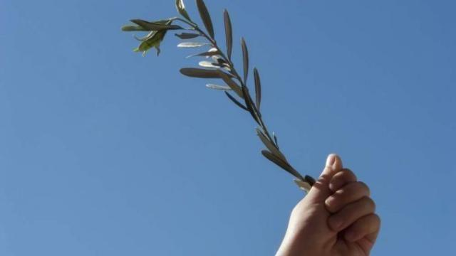 Gloria a Gesù, nella domenica delle Palme