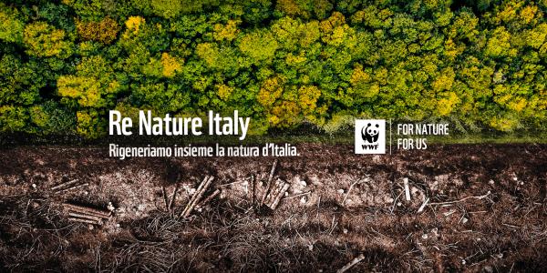 WWF Recuperare il valore natura genera risorse per il mondo