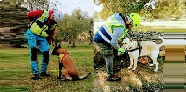 Da Sava (Ta) con i cani alla ricerca di persone scomparse