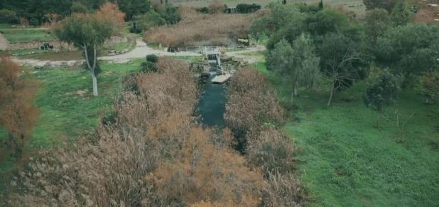 #meravigliosaTaranto: i fiumi Galeso e Cervaro