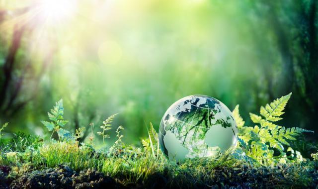 Ambiente: Italiani più attenti al pianeta (anche) grazie alla pandemia
