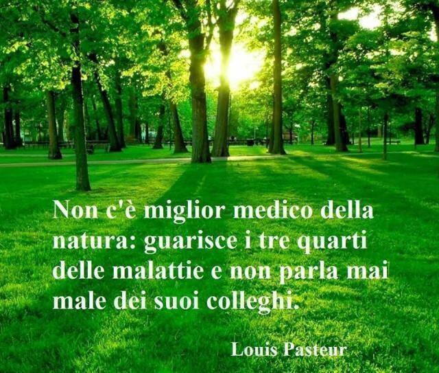 Riflessione sulla natura