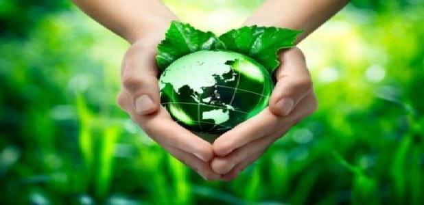 Giornata Mondiale dell'ambiente: il 5 Giugno ecopulizia al Bosco