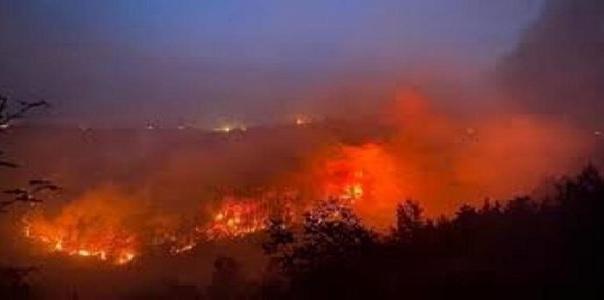Emergenza incendi, ODAV: testo unice e più sanzioni
