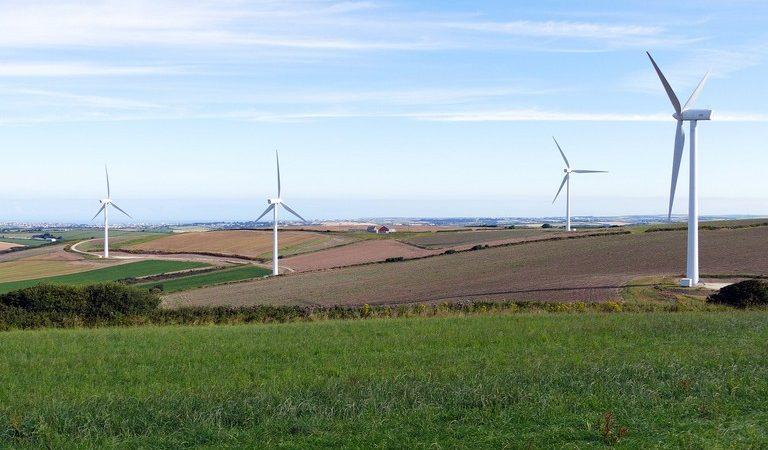 Regione Puglia dice no ai parchi eolici tra Spinazzola e Genzano di Lucania